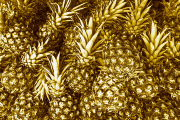 Gold pineapples background