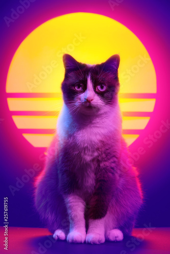 Retrowave synthwave portrait of a cat in 90s retro aesthetics style. 80s sci-fi futuristic animal party poster violet neon. - 257619755