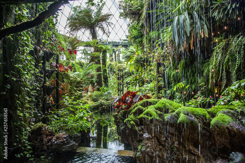 The Cloud Forest , Gardens by the Bay, Singapore