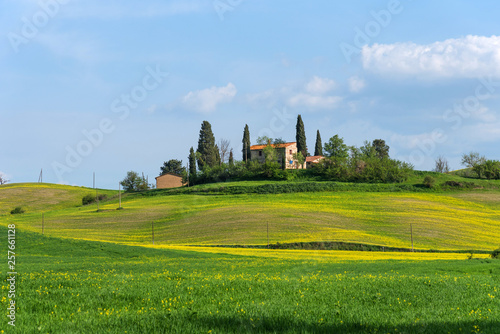 Leinwandbild Motiv Beautiful farmland rural landscape, cypress trees and colorful spring flowers in Tuscany, Italy. Typical rural house.