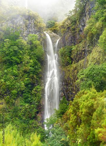 Risco waterfall - madeira island - 257704545