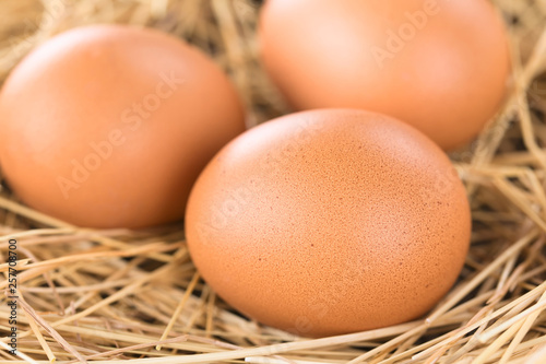 canvas print picture Fresh raw brown eggs on hay (Selective Focus, Focus on the front of the first egg)