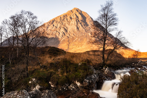 Buachaille Between the Trees © Kieran J. O'Neill