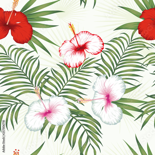 Multicolor hibiscus green leaves seamless white background © berry2046