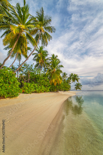 maldives, exotic destination for holiday or honeymoon, white coral beach with palms in paradise