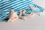 Blue beach bag with ocean seashell on white wooden background  with copy space. Concept for summer times and vacation at sea. - 257839998