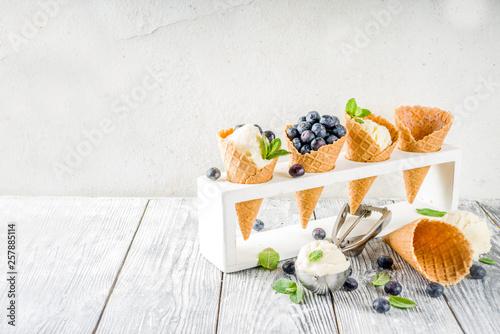 Leinwandbild Motiv White vanilla ice cream balls with ice cream cones, spoon, fresh blueberry berries and mint leaves, rustic wooden background copy space