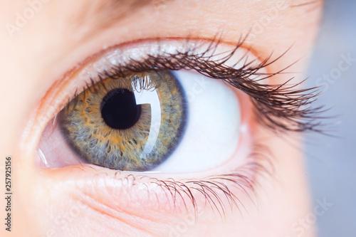 eye © Ramona Heim