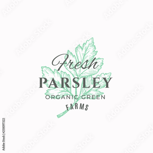 Fresh Parsley Abstract Vector Sign, Symbol or Logo Template. Green Parsley Branch with Leaves Sketch Illustration with Retro Typography. Vintage Luxury Emblem. © createvil