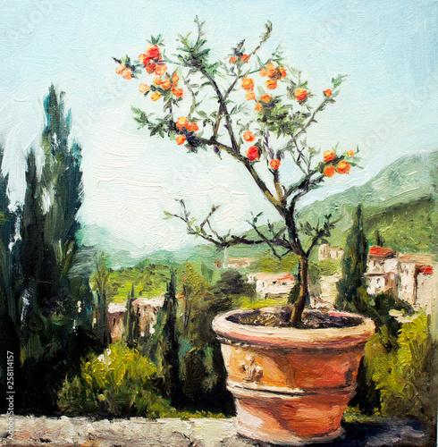 Italian landscape - Italy -Tangerine tree - beautiful landscape