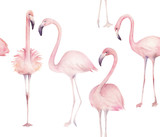 Watercolor seamless pattern with exotic flamingo. Summer watercolour  decoration print for wrapping, wallpaper, fabric - 258151756