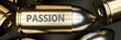 Passion as a killer feature, main trait and most important attribute - power of passion pictured as a 3d render of a metal bullet with engraved English word, 3d illustration
