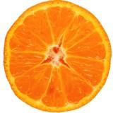 isolated slice of mandarin orange fruit