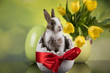 Easter decoration, rabbits,eggs and flowers
