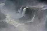 IGUAZU (naturaleza, aves, mamiferos, insectos, cascadas)