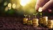 Leinwandbild Motiv Investment Concept. Plant Growing In Savings Coins Money. Business Development