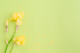 Flat lay composition with yellow irises on a green background