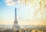 Fototapeta Fototapety z wieżą Eiffla - eiffel tour and Paris cityscape © neirfy