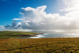 Fototapeta Fototapety na sufit - Coastline at Marwick Head - Orkney Islands, Scotland © XtravaganT