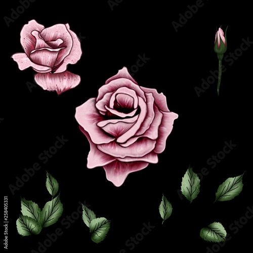 floral pattern, with red flower, with green leaves, black background, red rose, isolated, plain backgroundfloral pattern, with red flower, with green leaves, black background, red rose, isolated, plai