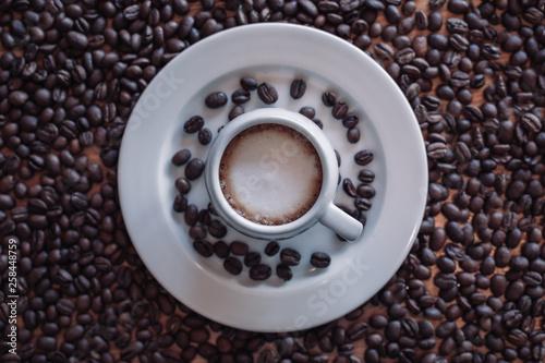 Coffee beans © Anna