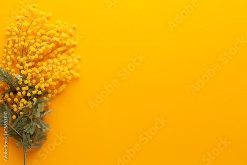 Yellow flower pattern on a yellow background.  Spring greeting card. - 258531141