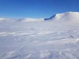 Photo of snow-covered tundra, Russia, Gydansky peninsula.