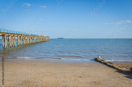 Felixstowe pier in the sea and beach © anastasiaarsentyeva