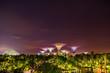 Leinwandbild Motiv Gardens by the bay in Singapore