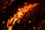 Fire flames on black background. Flame in forest outdoors.