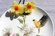 Leinwandbild Motiv Porzellanteller mit Kolibri, dekoriert mit Narzissen, Ostermotiv