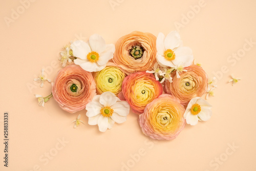 Blush and yellow ranunculus and fall anemone floral flat lay flower background