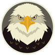 The eagle head Vector illustration of a bird in a round frame