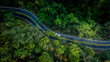 Leinwanddruck Bild - Car in rural road in deep rain forest with green tree forest, Aerial view car in the forest.