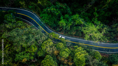 Leinwanddruck Bild Car in rural road in deep rain forest with green tree forest, Aerial view car in the forest.