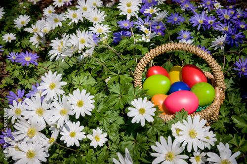 Leinwandbild Motiv Bunte Ostereier in einem Korb. Eiersuche
