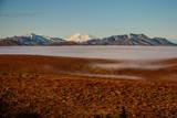 Denali national park tundra at foggy morning, Alaska