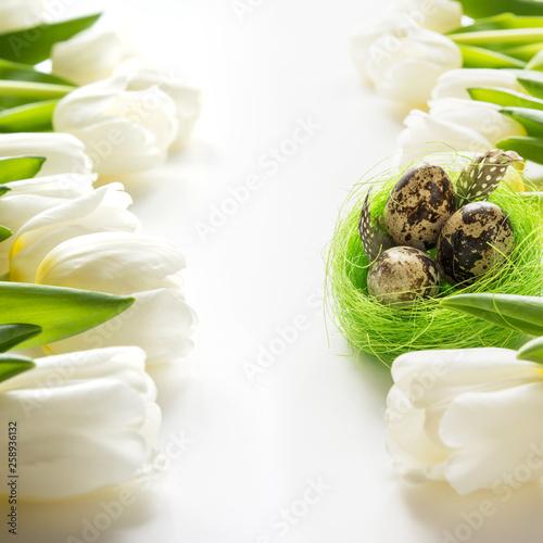 Easter pattern. White tulips, nest, eggs on white.
