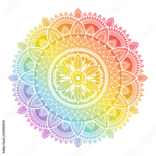 Colorful rainbow ethnic mandala on white background. Circular decorative pattern. © mrFox11