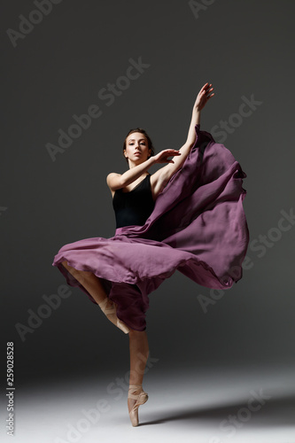 Leinwandbild Motiv Young beautiful ballerina is posing in studio