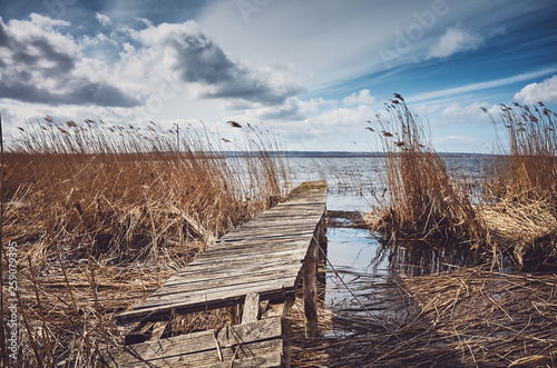 Retro toned picture of an old wooden ramshackle fishing pier in the reeds, selective focus. © MaciejBledowski