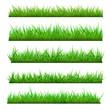 Set of Vector Spring Grass