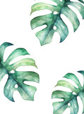 Tropical summer card. Abstract print. Watercolor leaf. Hand drawn illustration - 259086170