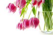 Bouquet of tulips isolated on white background.Spring greeting card.