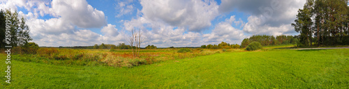 Panoramic landscape with meadows under cloudy sky - 259191919