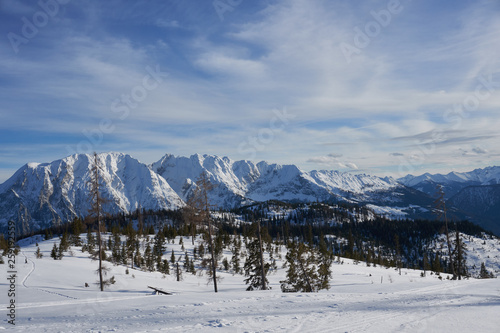 canvas print picture Verloren im Schnee