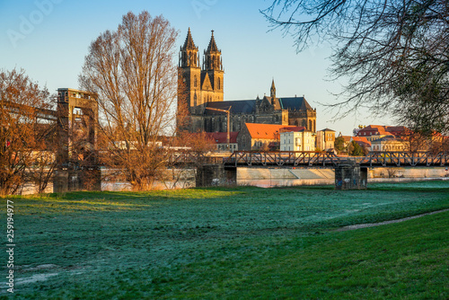 fototapeta na ścianę Magdeburg an der Elbe in Sachsen-Anhalt