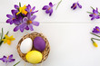 Purple crocuses and easter Eggs in the nest isolated on white wood Background. - 259197767