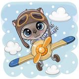Cute Kitten is flying on a plane