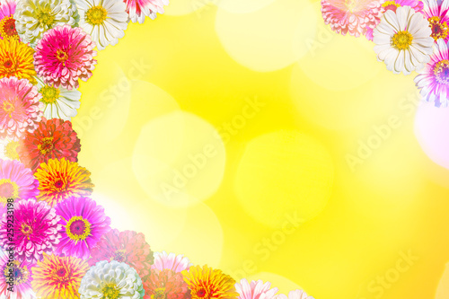 canvas print picture Bright festive yellow background with multi-colored zinnias
